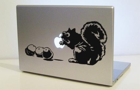 La pomme ne laisse pas cet écureuil indifférent...