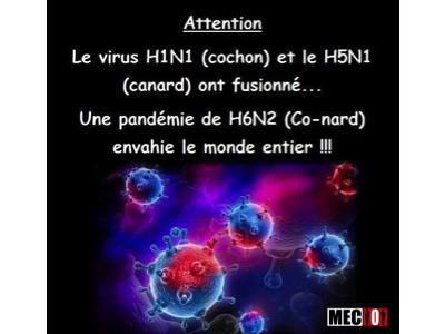 Un dangereux virus... plus répandu qu'on ne le pense !