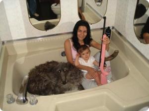 Ma femme, mon enfant, le chien, le fusil